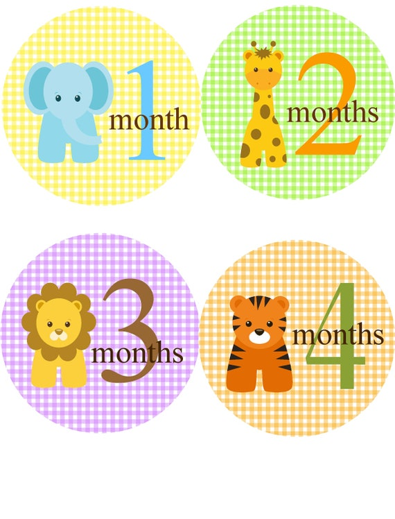 Baby Monthly Stickers Baby Month Stickers For Boy Or