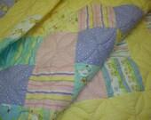 Duck Duck Goose crib quilt - REDUCED