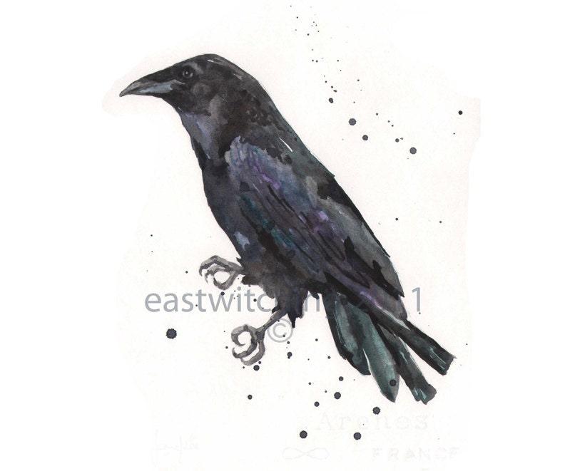 RAVEN Art Print 8x10 raven paintings