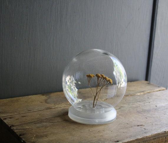 vintage glass display globe dome