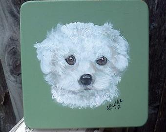 dog treat jar, Malti-poo, custom airtight lid,  pet treat jar  glass jar,  portrait of pet on treat jar, personalized pet treat jar