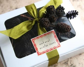 Miniature Natural Winter Pinecones
