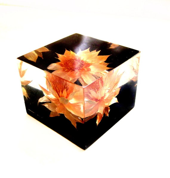 Vintage Lucite Paperweight, Square Cube, Dried Flower