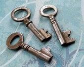 Vintage Key Trio (SK2890)
