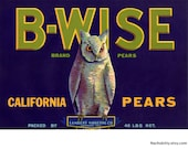 1930s Owl B Wise California Pear Label Mint Condition Ready to Frame