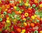 Tutti Fruiti 8/0 Loose Glass Seed Bead Combo Mix