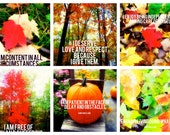 AUTUMN FALL Set of 36, Affirmation Empowerment Cards, Deck, Inspirational Card, Set