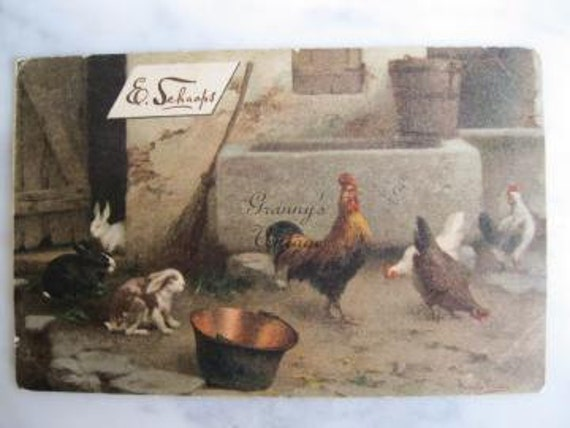 Antique Signed Artist Advertising Postcard. Bunnies Chicken Rooster. 1901