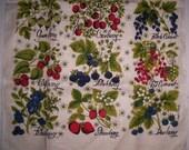 Vintage Linen Towel Kay Dee Berries Towel Lois Long Design