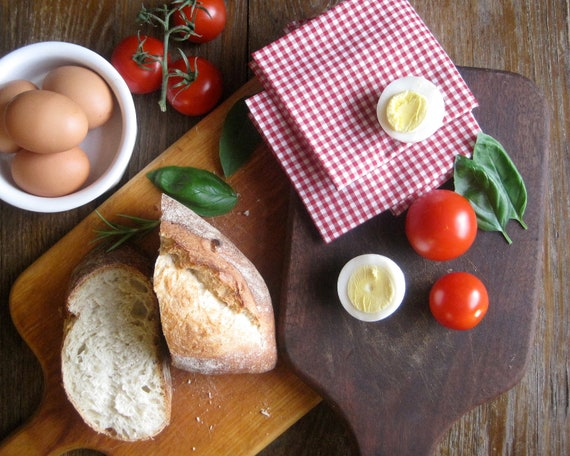 Picnic Napkins SET of 4 - Retro Red Gingham Kitchen Table Napkins - Rustic Reusable Eco Friendly Decor