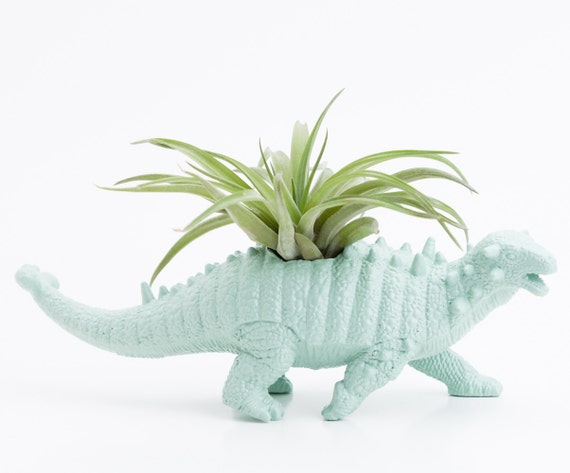 Dinosasur Planter with Air Plant Room Decor, College Dorm Ornament, Plants and Edibles, Mint Repurposed Toy