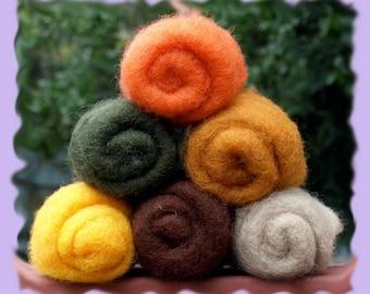 Norwegian C-1 Needle Felting Wool   Autumn Collections
