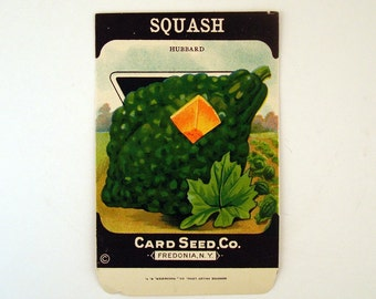 Vintage 1920s Unused Paper Seed Packet Squash
