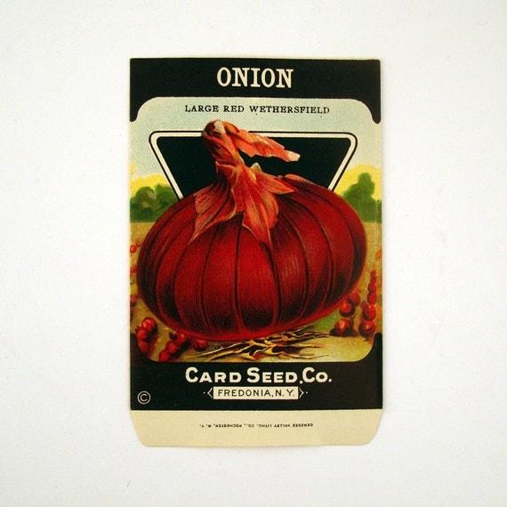Seed Packet Vintage 1920s Unused Paper Seed Packet Onion