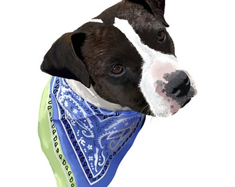American Staffordshire Terrier - 10x10in portrait