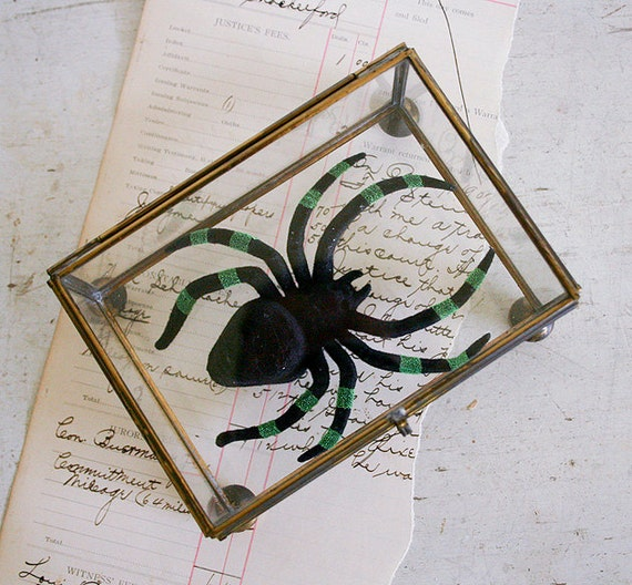 Spooky Halloween Decor - Vintage Glass and Brass Box with Spider