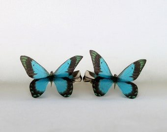 1 Pair Green Tipped Blue Black Silk Butterfly Hairclips