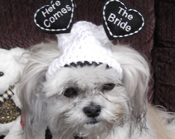 WEDDING PARTY Dog hat - Here Comes The Bride - Floating Hearts - 2 to 20 lb pets-made to order