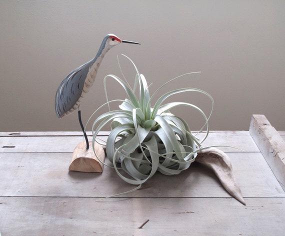 vintage carved shore bird