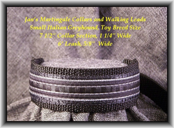 Small Dog Martingale Collar and Leash Combination Walking Lead, Italian Greyhound, 8 In