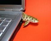 Leopard Shark USB Flash Drive