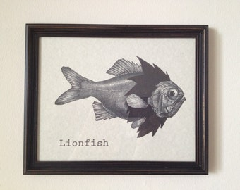 Lionfish Print 8 x 10