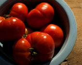 Livingston Paragon Tomato Seeds - Naturally and Organically Grown Heirloom Tomato Seeds