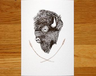 SALE: Bison - giclée print