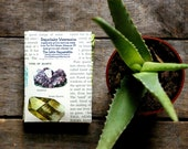 Children's Gardening Kit // 5 organic heirloom seed packets // educational gift // gift for kids // from our farm in handmade seed packets