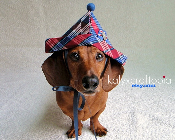 Jaunty Red and Blue Plaid Silk  Napoleon Party Hat for Dachshunds