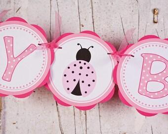 Ladybug HAPPY BIRTHDAY Banner - Ladybug Light & Hot Pink Themed Party Decorations - Ladybug Party Supplies