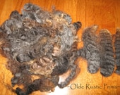 "Stunning 4"" Gray Washed and Separated Wool for Primitive Doll Hair-ONE FULL OUNCE"