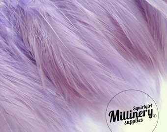 Lilac Purple Hackle Feather Fringe for fascinators, millinery and crafts (Around 60 feathers)