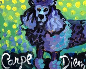 """Poodle """"Carpe Diem"""" Key Holder"""