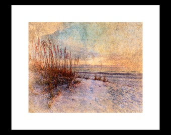 Sea Oats 8X10 Custom Print