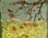 Bird in Maple Tree Giclee print of original batik on silk