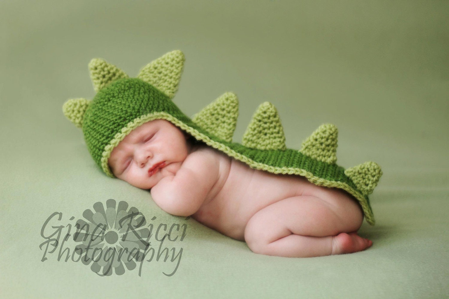Crochet pattern for baby dinosaur hat dancox for dinosaur baby crochet pattern easy hat crochet pattern hat bankloansurffo Gallery