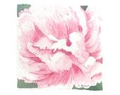 Petite Original Watercolor Flower Art Pink Peony