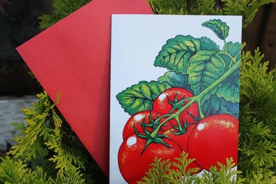 TOMATO garden card, cherry tomato seeds, shimmery red envelope
