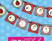 INSTANT DOWNLOAD DIY Printable Little Lady Ladybug Happy Birthday Banner from DoodleLulu by 2 june bugs