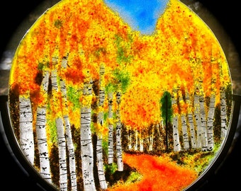 Fused Glass Forest  Aspen Birch Trees in Any Season Personalize