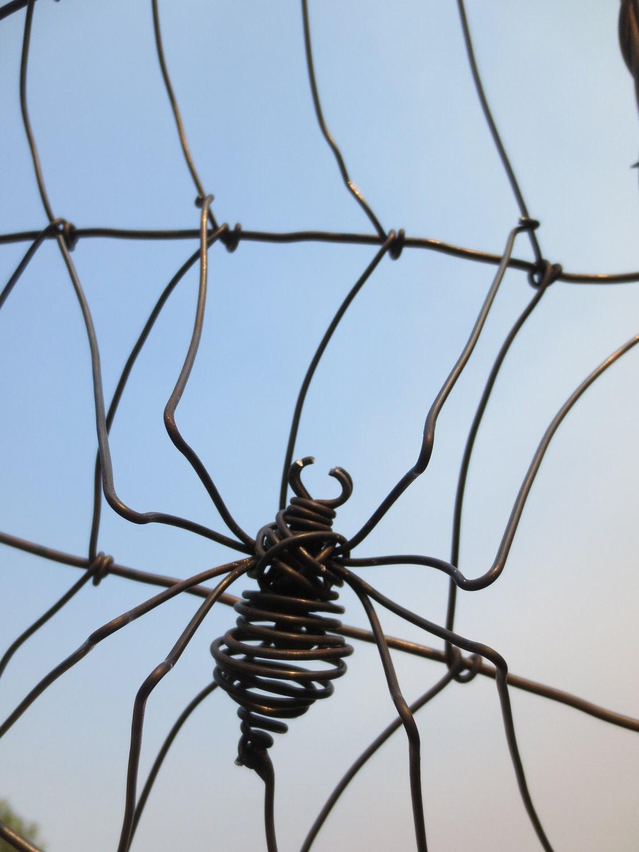 Araign e filer un treillis de jardin de fil de fer barbel web - Araignee des jardins en 6 lettres ...