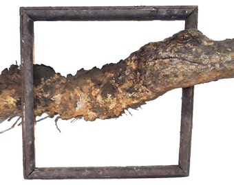 Gator Frame Of Reference