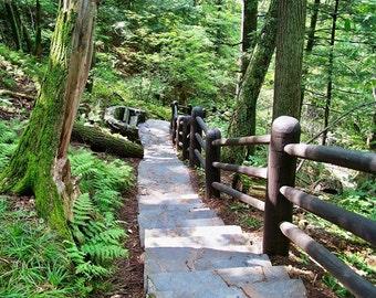 Stairway- 8x10 Photo