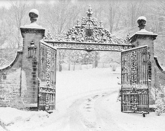 Black architectural Photography details iron gate new snow cold winter metal estate white falling snowstorm - A kind of blue -fine art photo