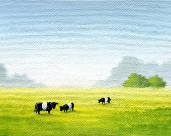 Three Belted Galloways No.1 - 4 x 6 Print of Original Painting by SBMathieu