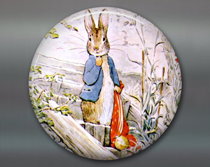 "3.5"" Beatrix Potter magnet, bunny fridge magnet, cute bunny decor, large children's magnet, stocking stuffer for kids  MA-110"