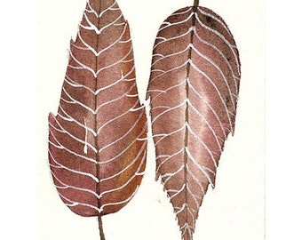 Original Watercolor Art - Leaves collection No.2 - ACEO Painted by Lorisworld
