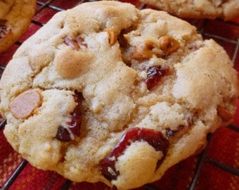 Pecan Cranberry Cinnamon Chip Cookies