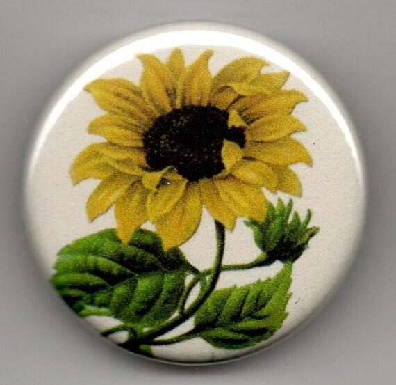 Sunflower Duet 1.25 inch BUTTON/PIN/BADGE Vintage Image